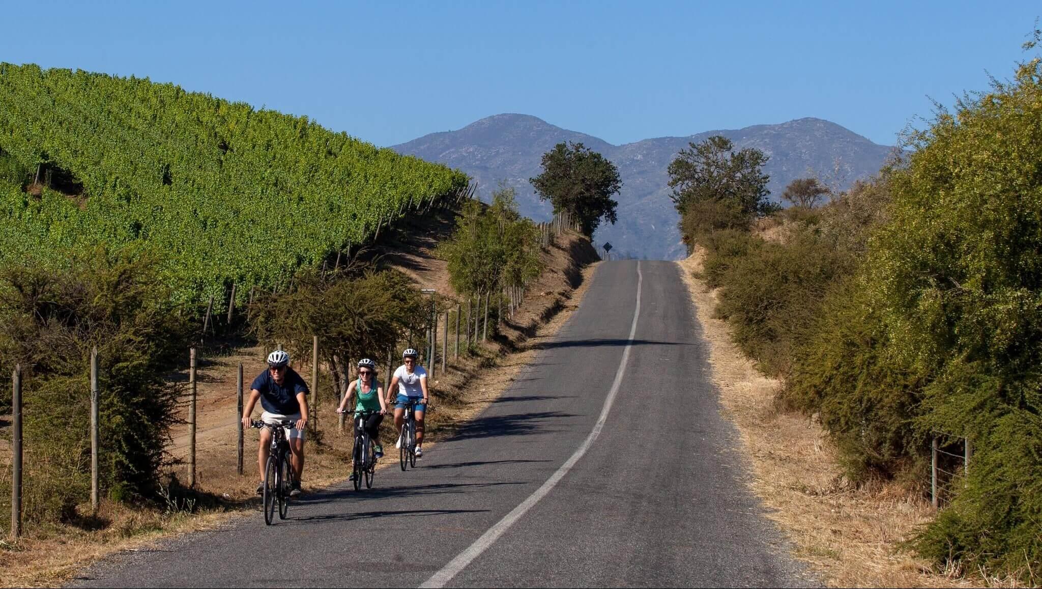 Bikes Wine & Patagonia